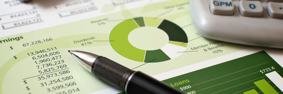 Vođenje blagajne - obrada izvoda -obračun plata